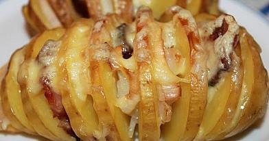 Bulvyčių armonikėlės