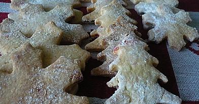 Trapios tešlos sausainiai su spanguolėm