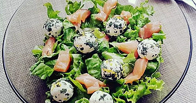 Cold Salmon salad with Cottage Cheese