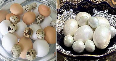 Perlamutriniai kiaušiniai. Įneškite prabangos į savo namus