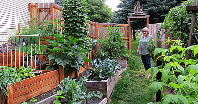Augalus apipurškiu tokiu savo užpilu ir mano agurkai bei pomidorai klesti