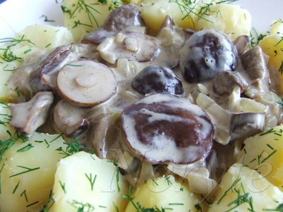 Grybai su bulvėmis ir grietine