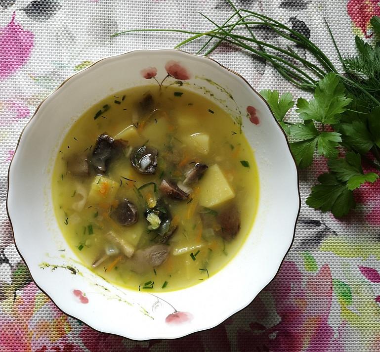 Daržovių sriuba su grybais