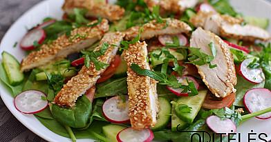 Gaivios daržovių salotos su kepta vištienos krūtinėle ir sezamo sėklomis